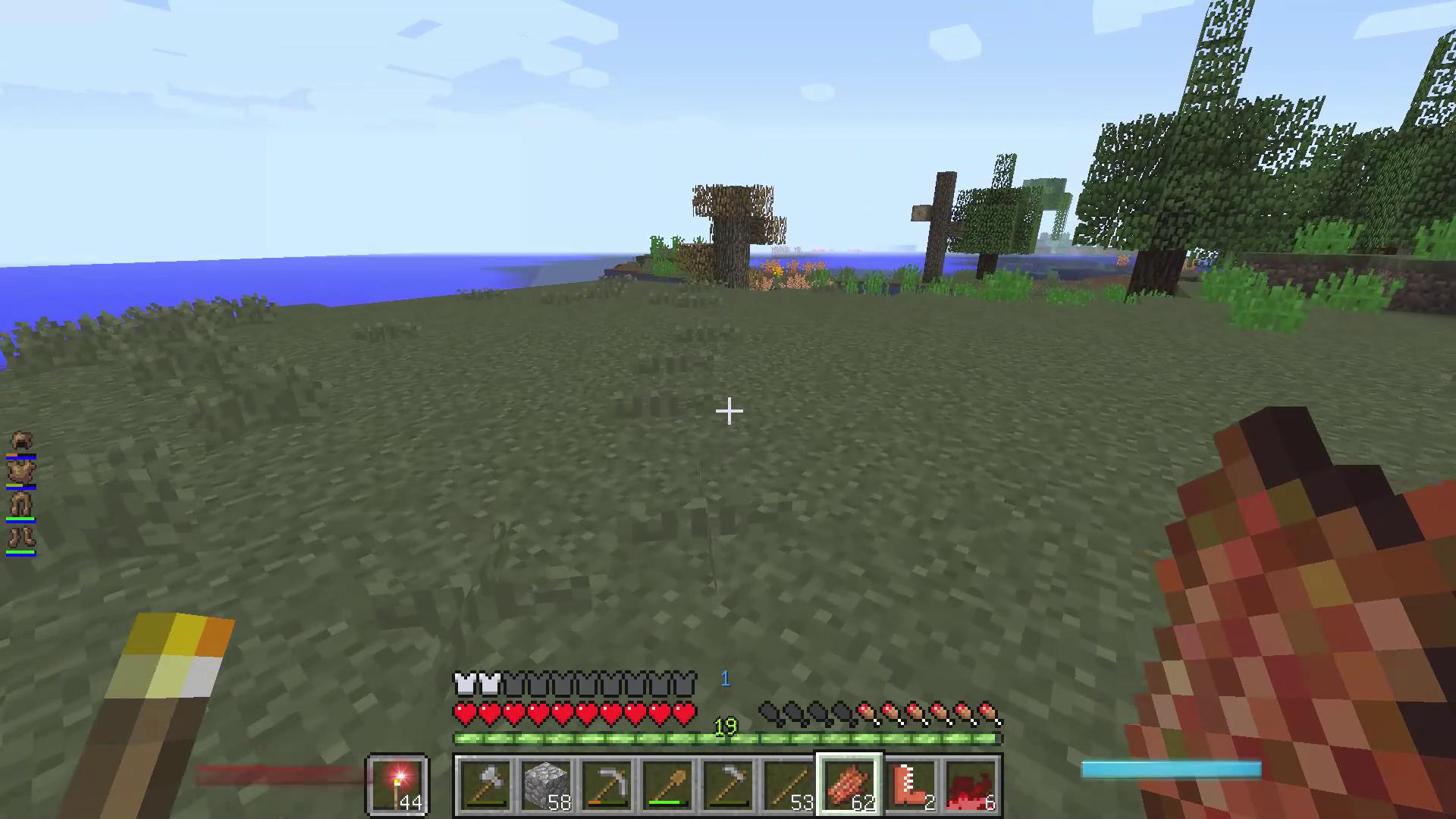 近くに生えていたゴムの木