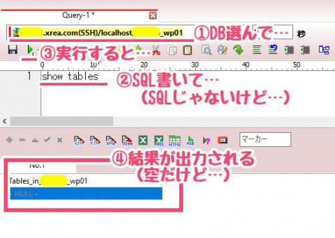 A5 - SQL実行